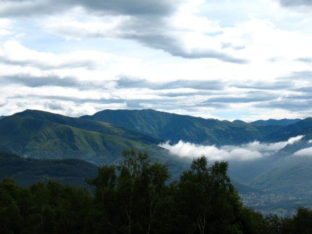 Forestale per l'Alpe di Torricella - vista sulla Val Colla con il Monte Bar e San Lucio