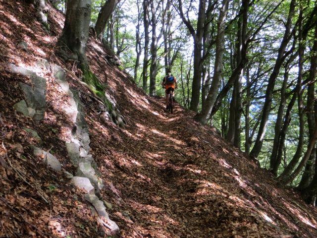 In direzione dell'Alpe Canigiolo