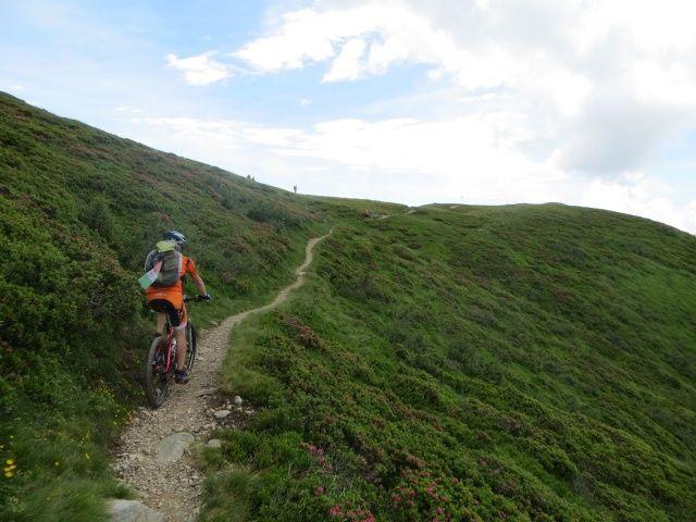 Ultimo tratto di salita prima di  incrociare il sentiero che scende dalla cresta del Gradiccioli