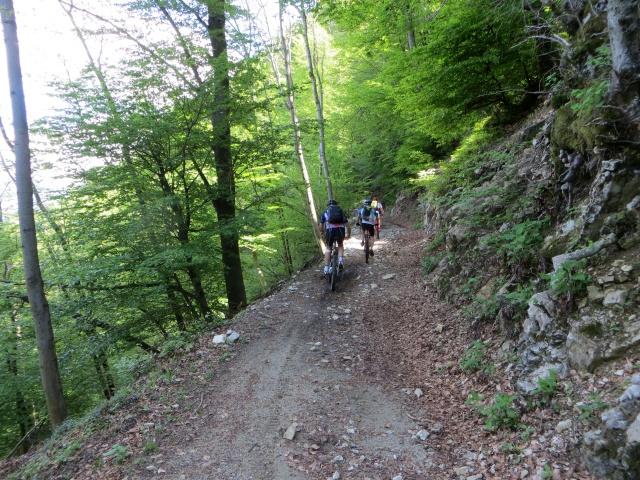 Sentiero del Viandante: in direzione del Forte di Vallalta