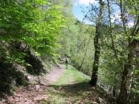 Forestale da Cormeta a Pozzo Piano