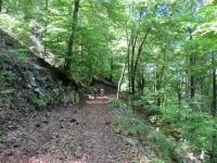 Forestale che aggira il Monte Nudo