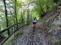 Sentiero del Viandante: salita verso Forte di Vallalta
