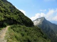 Single-track in direzione della Bocchetta del Motto Rotondo, vetta del Tamaro sullo sfondo