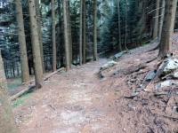 Sentiero per Pian Cusello dall'Alpe Canigiolo