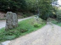 Strada per Torricella