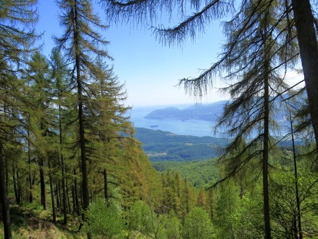 Panorama sul golfo Borromeo del Lago Maggiore lungo lo sterrato che conduce al Todun dalla Cappella Fina