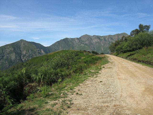 Da Il Colle lungo la sterrata militare che aggira il Monte Spalavera