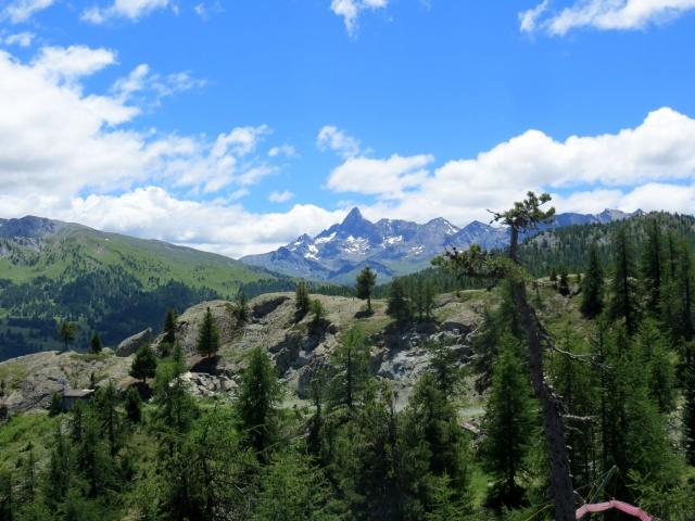 In direzione del Colle Bercia - ottimo panorama, al centro il  Pic de Rochebrune (3.320, Francia)