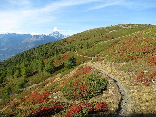 Il sentiero che scende dal Gibidum (Panoramaweg) - Fantastici colori autunnali (Trail rimosso da traccia gps)