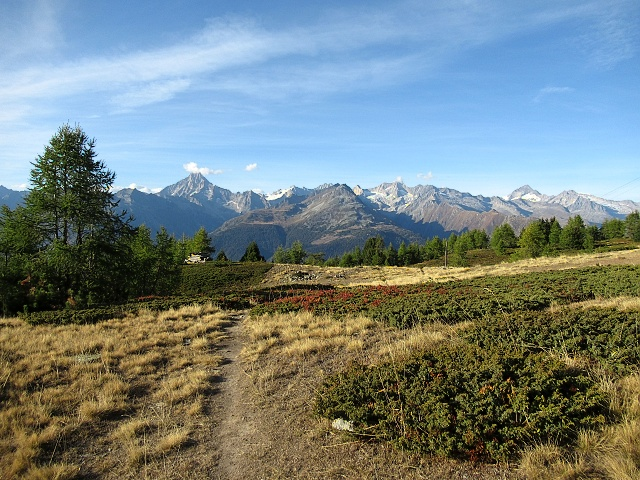 Il sentiero che scende dal Gibidum (Panoramaweg) (Trail rimosso da traccia gps)