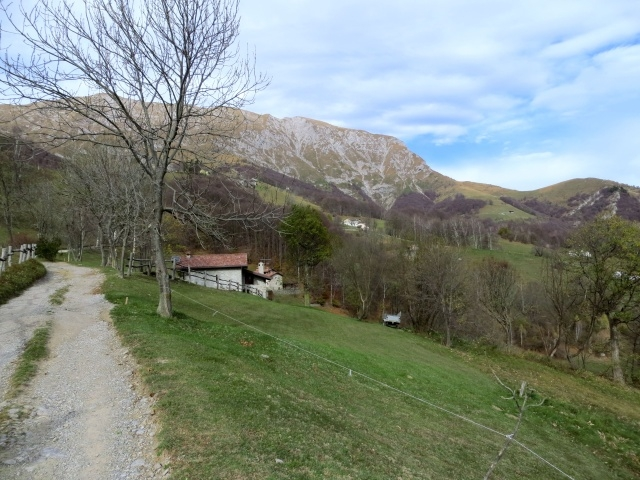 Salita all'Alpe Cova