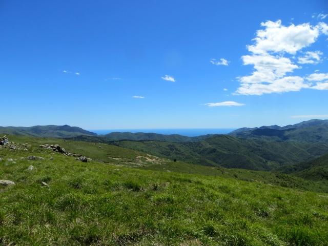 Panoramica dalla vetta del Monte Pracaban, il mare dal passo del Turchino