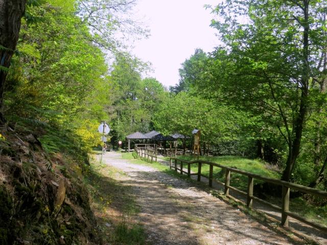 Inizio della forestale che parte dal Sacro Monte con l'attigua area picnic