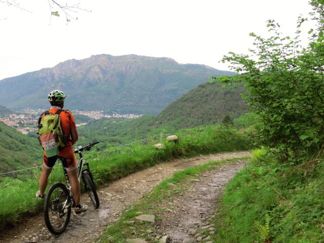 Lungo la forestale che scende dall'Alpe Sacchi in direzione dei Laghi di Nonio, panorama su Monte Mottarone, ai suoi piedi Omegna