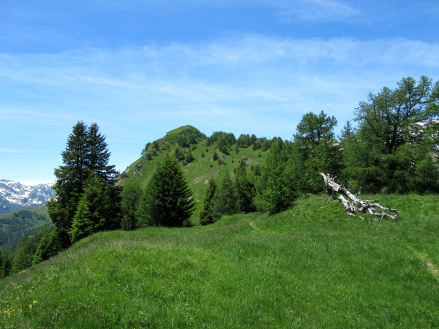 Pian Curnicc - panorama a ovest