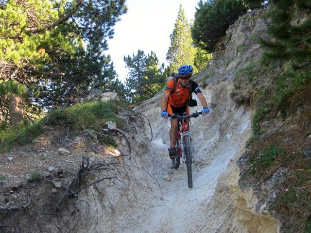 Tratto finale del sentiero prima dell'Alpe Pertusio