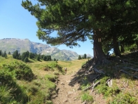 Sentiero per Croce Portera