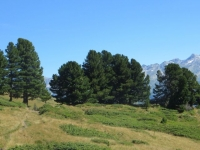 Sentiero per Croce Portera, panorama su Adula