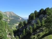Nei pressi delle Foppe di Pertusio, particolare sull'Alpe Pertusio
