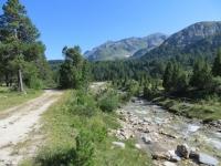Tra l'Alpe Pertusio e l'Alpe Gana, sterrato che costeggia il torrente Brenno