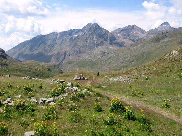 Il sentiero che percorre il vallone di Grauson