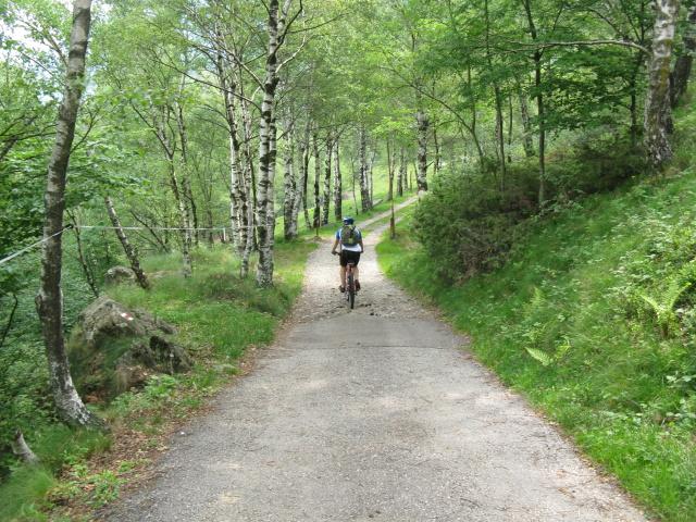 Strada per l'Alpe Zalto