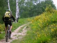 Single-track in direzione dell'Alpe Murecc