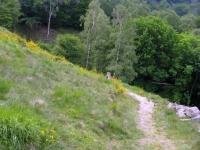 Alpe Murecc - sentiero