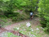 Single track verso l'Alpe di Matro
