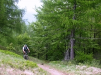 Tratto impegnativo di single-track verso l'Alpe di Matro