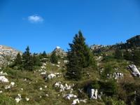 Salita da Artavaggio verso i piani di  Bobbio - Rifugio Nicola
