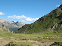 Baettelmatt Alp
