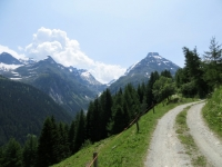 Salita al Saflischpass in direzione di Sickerchaeller