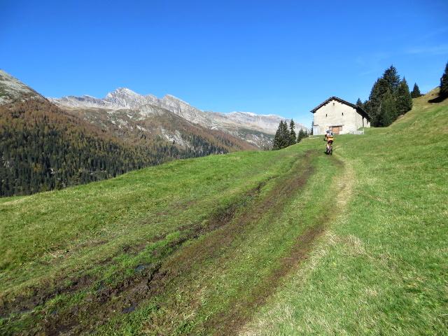Alpeggio in prossimità del Forestin