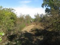 Attraversamento nei pressi della Riserva Naturale Speciale della Bessa (ex Miniera d'oro)
