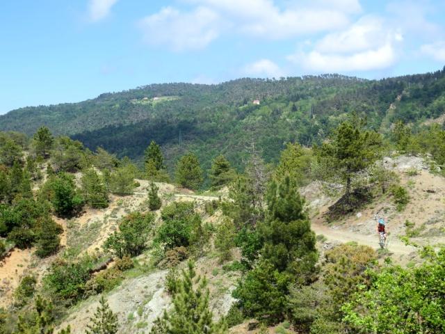La forestale che si sviluppa in cresta sulle colline tra Ovada e Rossiglione