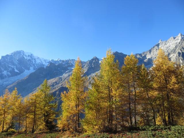 Vista sul Massiccio del Monte Bianco - spettacolari colori dell'autunno