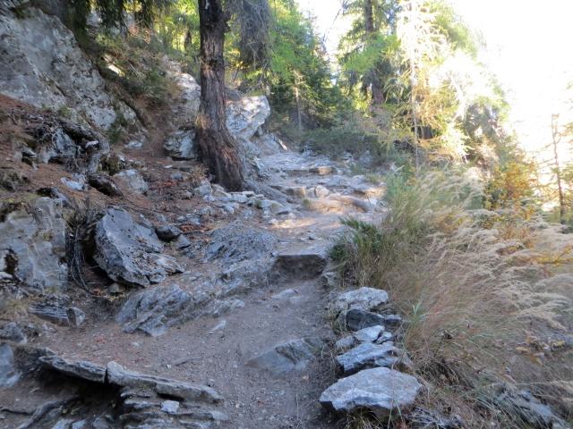 Il sentiero che scende dal Rifugio Bertone alle frazione di fondovalle di Courmayeur
