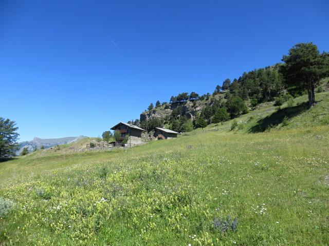 In direzione dell' Alpe Les Boettes, particolare