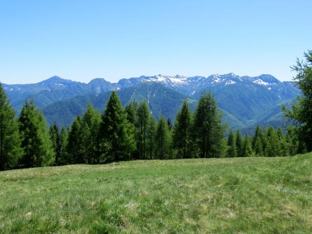 Panorama sui rilievi Vigezzini e della Val Grande - Colma di Craveggia