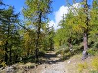 Salita all'Alpe Marsasca