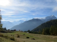 Alpe Coatè
