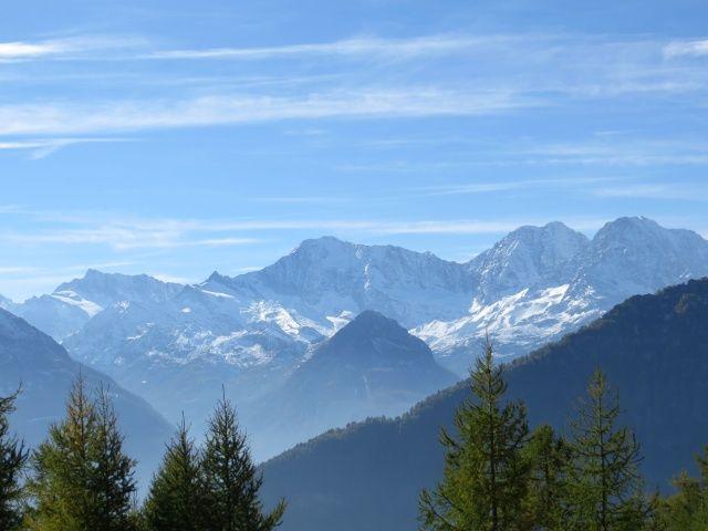 Vista dall'Alpe Marsasca, da sx a dx: Pizzo D'Andolla, Weissmies, Lagginhorn. Fletschhorn