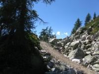 Verso l'Alpe di Ruino