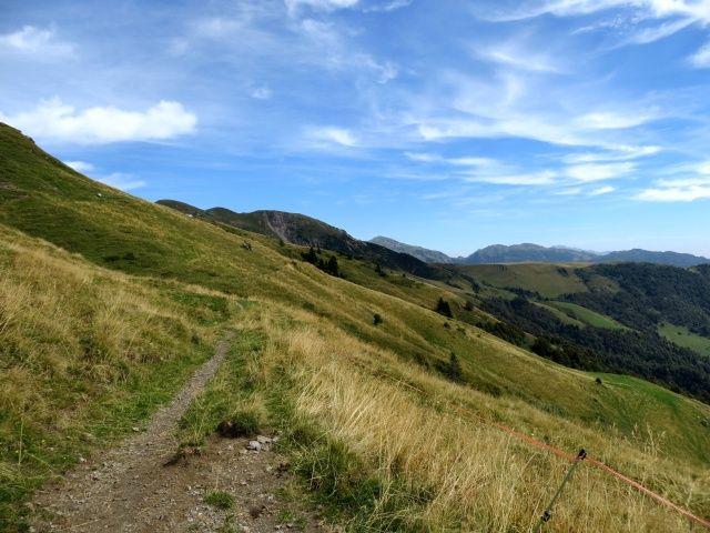 Sentiero per Casera Aralalta, sullo sfondo i Piani dell'Alben