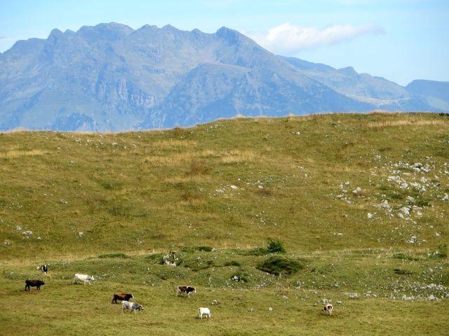 Piani dell'Alben, panorama