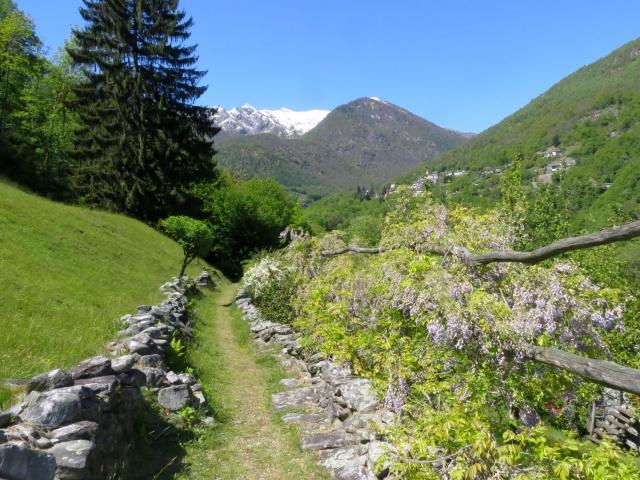 Via delle Vose  - nel scendere a valle il panorama si apre