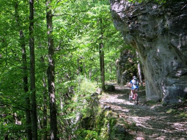 La forestale che risale la Val Onsernone