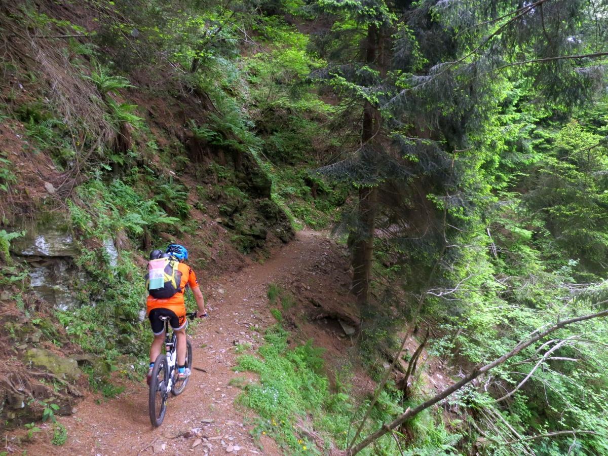 Trail dopo Pianturino in direzione della Cima di Medeglia